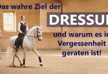 Klassische Dressur