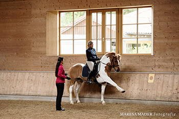 Spanischer Schritt Pony
