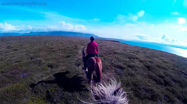 Die 17 Schonsten Geschenke Fur Reiter Herzenspferd
