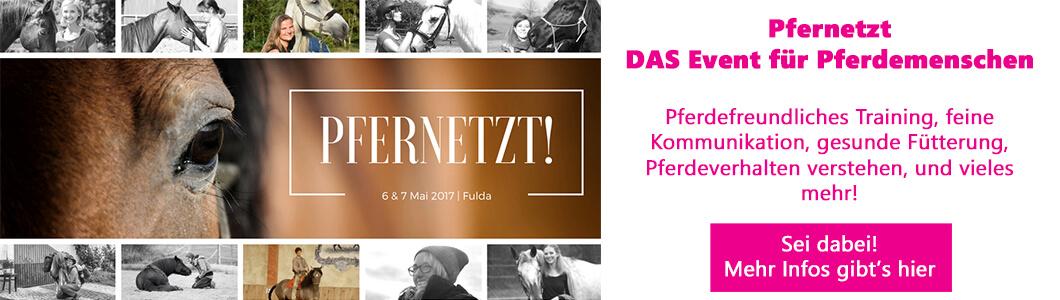 Pfernetzt - DAS Event für Pferdemenschen - sei dabei!
