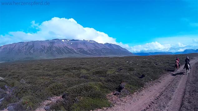 Reiturlaub Island reiten