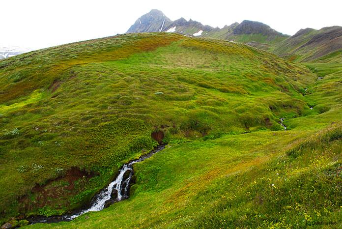 Grüne, buckelige Hügel, durchzogen von einem schmalen Bach. Im Vordergrund ist ein kleiner Wasserfall, im Hintergrund ein Berg mit kleinen Schneeflecken.