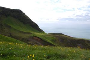 Grüne, grasbewachsene Hügel im Süden von Island. Im Hintergrund sieht man das Meer.