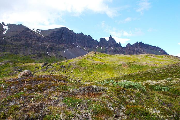 Grüne, buckelige Hügel mit einem seltsam gezackten schwarzen Berg im Hintergrund. Das Wetter ist schön, die Sonne scheint.