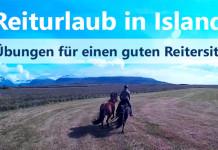 Reiturlaub in Island: ein Bild von Christinas Helmkamera. Man sieht Hlín auf ihrem Pony und mit ihrem Handpferd in schnellem Galopp auf einer gemähten Wiese. Im Hintergrund sind die hohen Berge.