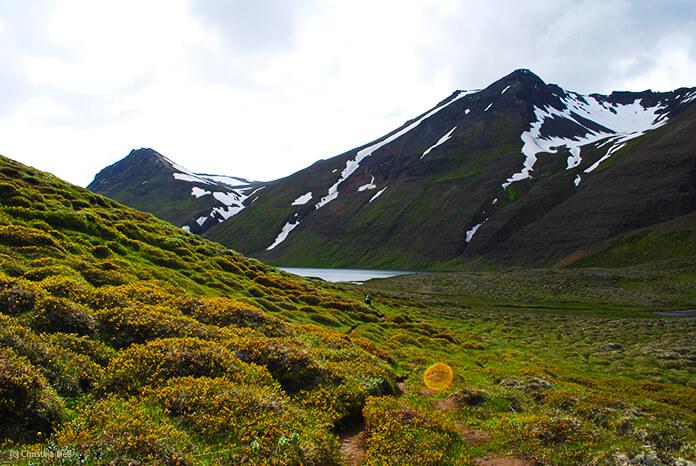 Ein schmaler Pfad windet sich durch grüne Hügel bewachsen mit isländischem Moos. Man sieht einen kleinen Zipfel des Sees und die Berge dahinter.
