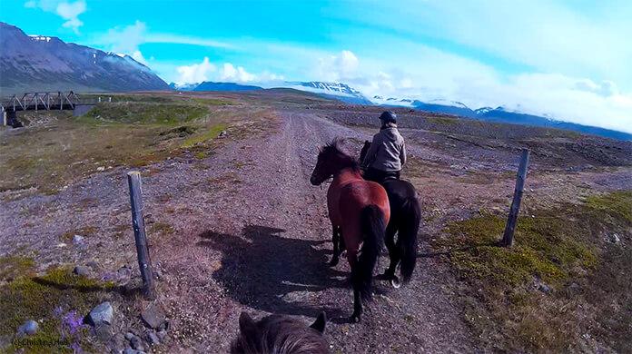 Ein Bild von Christinas Helmkamera: man sieht die Ohren von Nói, vor ihr reitet Hlín auf einem Rappen, mit einem Fuchs als Handpferd. Es geht über eine weite, steinige Ebene. In der Ferne sieht man die hohen Berge, die Sonne scheint, der Himmel ist blau.