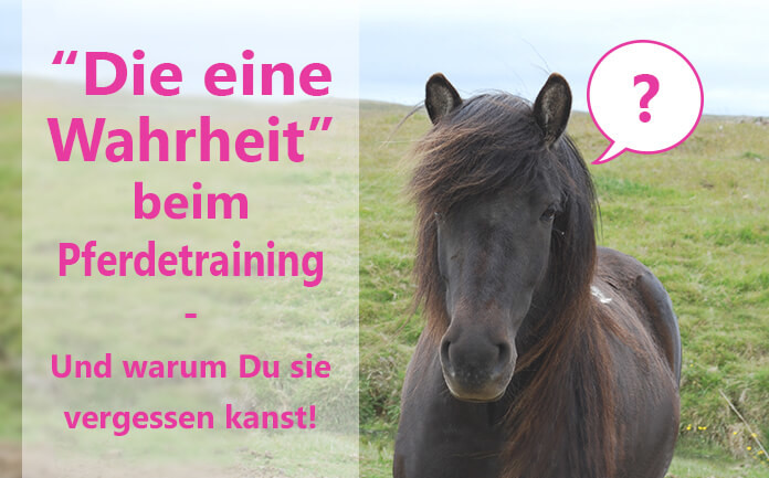 Wahrheit Pferdetraining