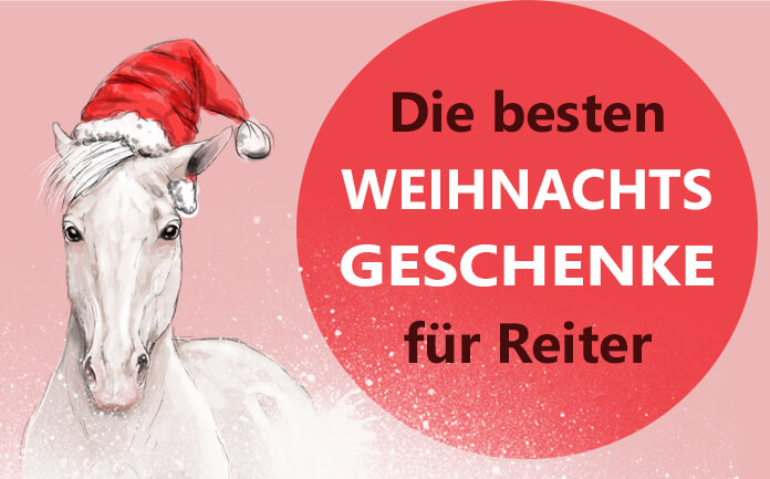 weihnachtsgeschenke f r reiter die besten geschenkideen herzenspferd. Black Bedroom Furniture Sets. Home Design Ideas