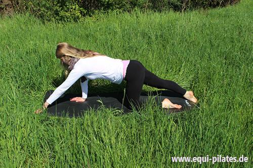 Pilates für Reiter: Cat Stretch Ausführung 1