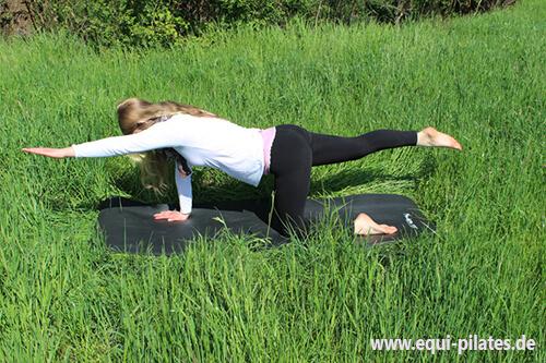 Pilates für Reiter: Cat Stretch Ausführung 2