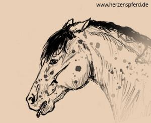 Pferd mit verwirrt nach hinten genommenen Ohren