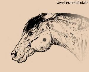 Pferd mit drohend nach hinten angelegten Ohren