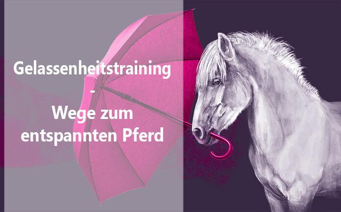 Gelassenheitstraining Pferd