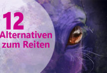 Alternativen zum Reiten