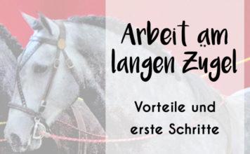 """Bild eines Pferdekopfes mit Langzügeln und Aufschrift: """"Arbeit am langen Zügel - Vorteile und erste Schritte"""""""