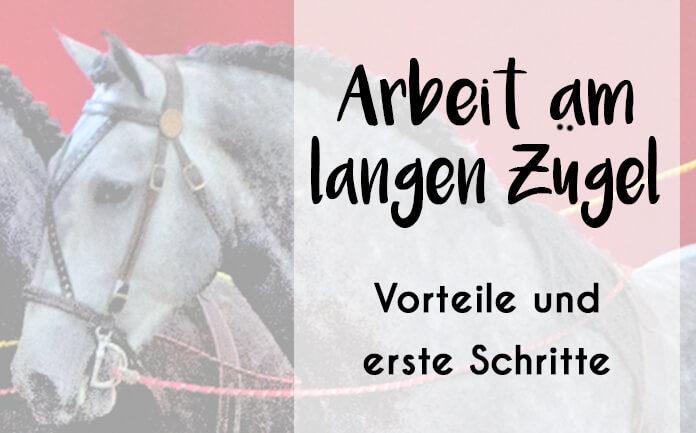 Bild eines Pferdekopfes mit Langzügeln und Aufschrift: