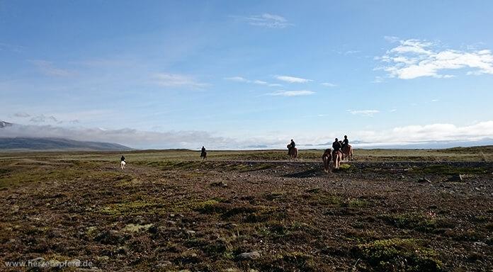 6 Reiter auf Islandpferden in der weiten, isländischen Vulkanlandschaft