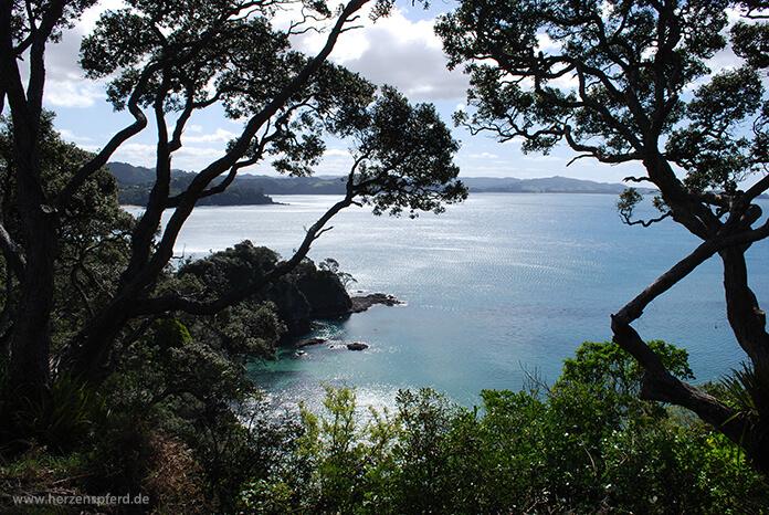 Blick auf das türkisblaue Meer einer Bucht in der Bay of Islands, Neuseeland