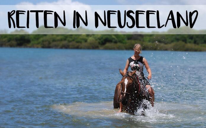 Bild von Christina auf einem Pferd im Meer mit der Überschrift