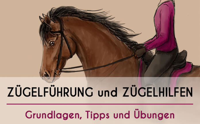 Bild eines gezeichneten Pferdes mit Reiter mit Überschrift:
