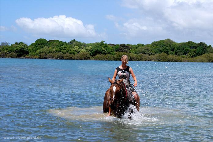 Reiterin und Pferd schwimmen im Meer