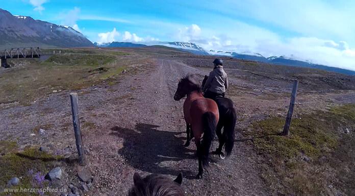 Reiterin mit Handpferd auf der Ebene im Skagafjord, im Hintergrund sieht man das Hochland