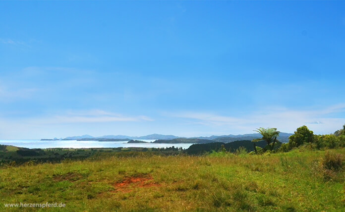 Aussicht auf das Meer und die Buchten der Bay of Islands von der Spitze des Vulkans aus