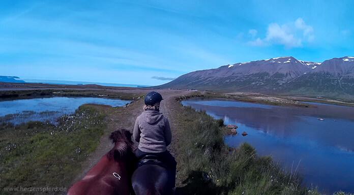 Reiterin mit Islandpferden zwischen zwei Seen im Skagafjord, Island