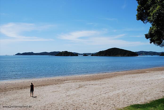 Der Strand in Paihia, Neuseeland