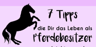 """Steigendes Pferd mit Text """"7 Tipps, die dir das Leben als Pferdebesitzer leichter machen"""""""