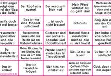 25 Bingo-Felder mit den Aussagen des Reiter-Bullshit-Bingo