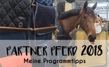 Partner Pferd 2018 - Meine Programmtipps