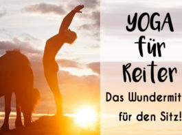 Eine Frau macht eine Yogaübung. Neben ihr grast ein Islandpferd, im Hintergrund geht die Sonne unter.