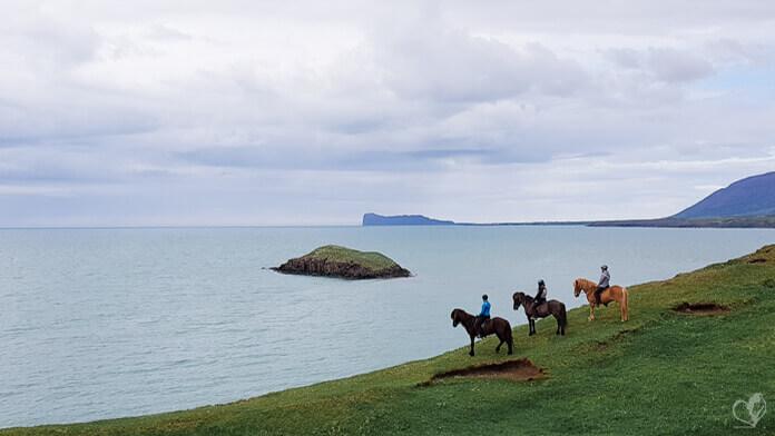 Drei Reiter auf ihren Islandpferden stehen nebeneinander am Rand der Klippen, vor ihnen das weite Meer.