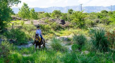 Eine Reiterin bahnt sich ihren Weg durch viele kleine Bäche zwischen hohem Gras und Felsbrocken.