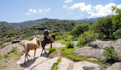 Ein Reiter mit Handpferd auf einem steinigen Pfad in die Berge.