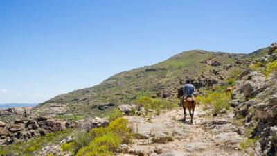 Ein Reiter sucht sich seinen Weg auf einem steinigen Pfad hinauf in die Berge. Links von ihm geben die Berge den Blick ins Tal frei.