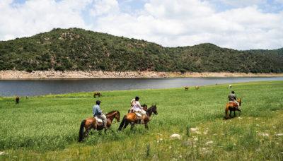 Eine Gruppe Reiter auf einer weitläufigen Wiese am Ufer eines großen Sees, im Hintergrund sind frei grasende Pferde.