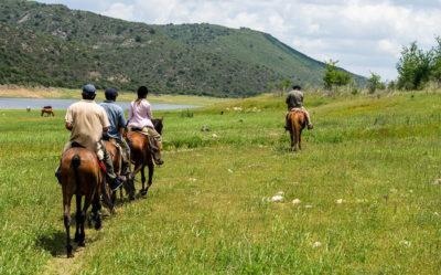 Eine Gruppe Reiter auf einer weitläufigen Wiese am Ufer eines großen Sees.
