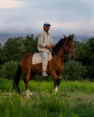 Ein Paso Peruano mit Reiter ohne Sattel im Paso Llano.